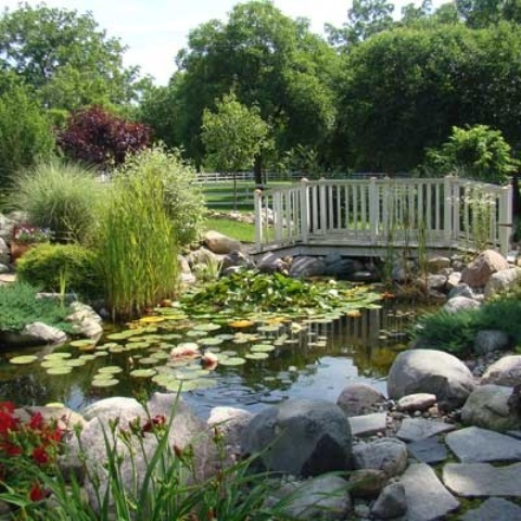 53 backyard pond ideas (45)