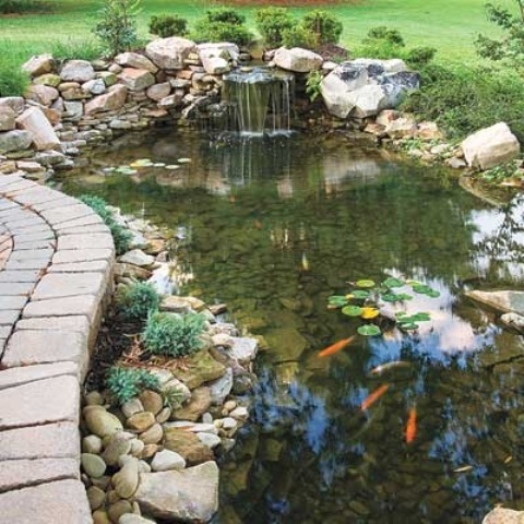 53 backyard pond ideas (46)