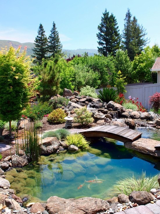 53 backyard pond ideas (47)