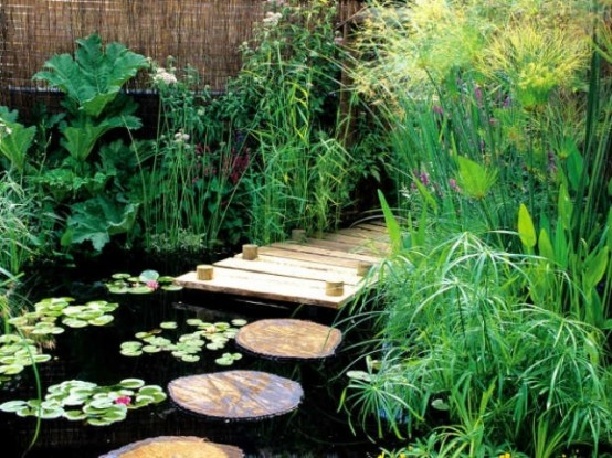53 backyard pond ideas (51)