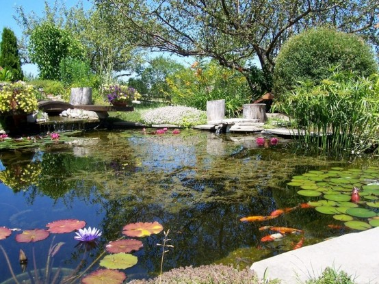 53 backyard pond ideas (53)