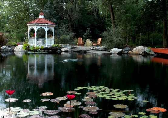 53 backyard pond ideas (7)