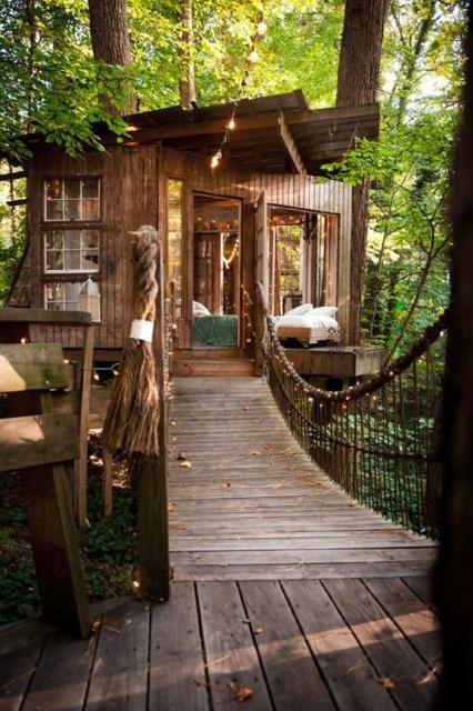 Bohemian House nature nestling (2)