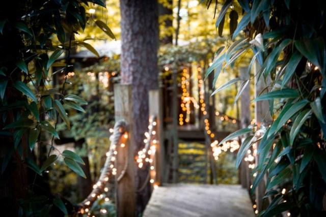 Bohemian House nature nestling (8)