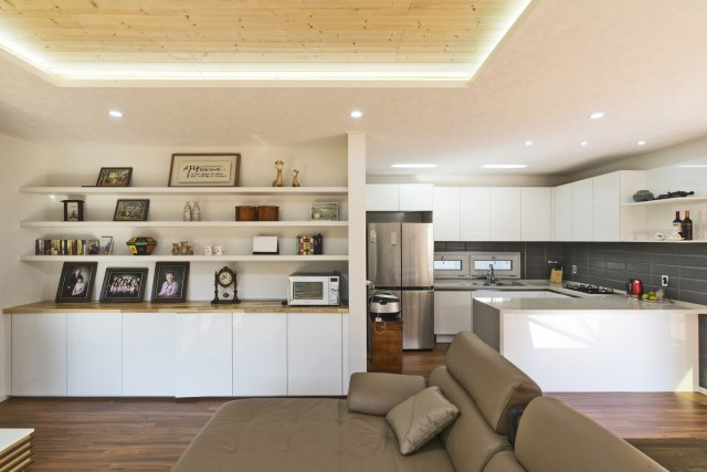 Modern home Designed with modern materials (5)