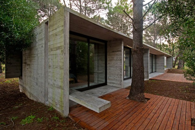 concrete-home to-the-surrounding-forest (1)
