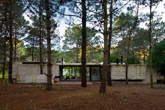 concrete-home to-the-surrounding-forest (14)