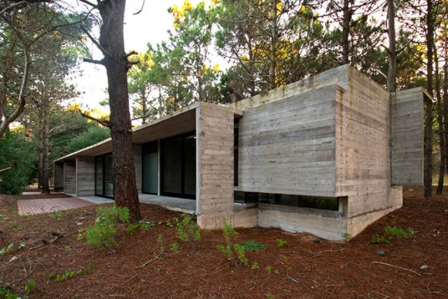 concrete-home to-the-surrounding-forest (3)