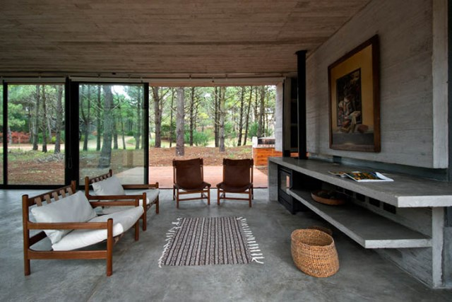 concrete-home to-the-surrounding-forest (4)