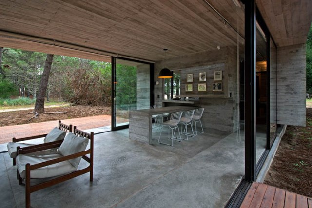 concrete-home to-the-surrounding-forest (5)