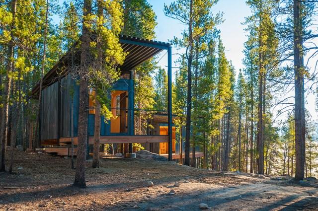 micro cabin house (12)