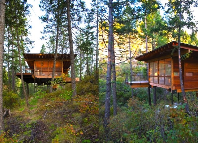 minimalist cabin home on the hills (3)