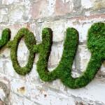 """DIY : ไอเดียแต่งผนังบ้านและกำแพงด้วย """"หญ้ามอส"""" ทำเองได้ไม่ยาก มาดูกัน…"""