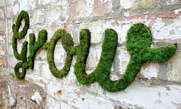moss wall diy (1)