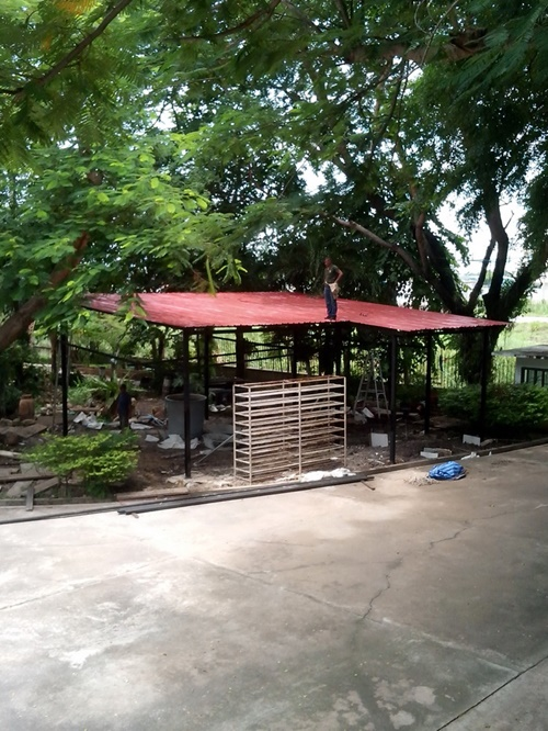 mushroom hut cafe review (12)
