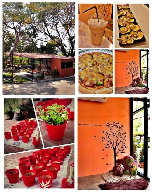 mushroom hut cafe review (20)