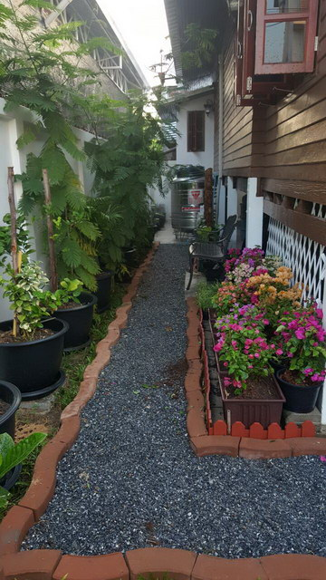 small sideyard garden review (2)