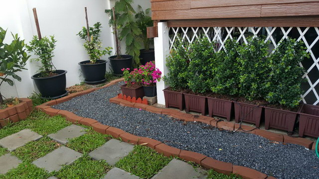 small sideyard garden review (3)