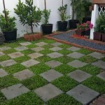 Review : จัดสวนข้างบ้านพื้นที่จำกัด ได้อารมณ์เหมือนสวนสาธารณะ ใช้เวลาหลังเลิกงานวันละ 1 – 2 ชั่วโมง