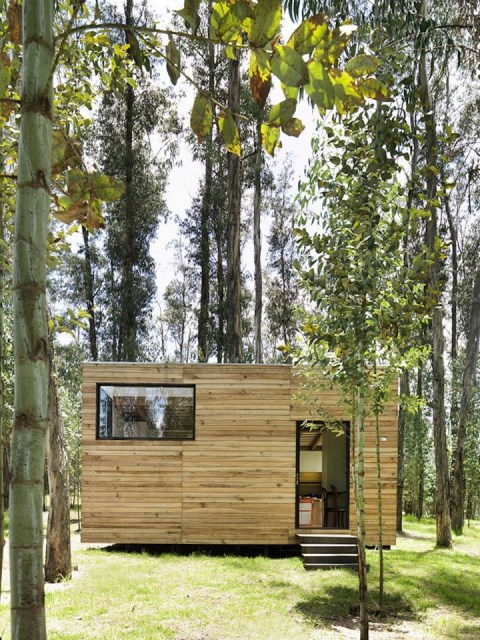 studio Small home Decorated with modern shapes (7)