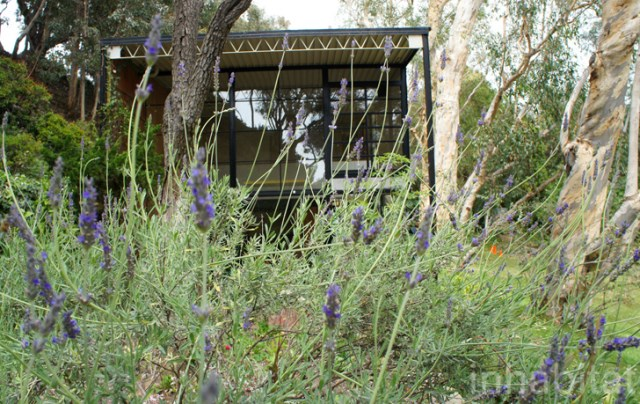 two- storey Modern home steel glass natural garden (11)