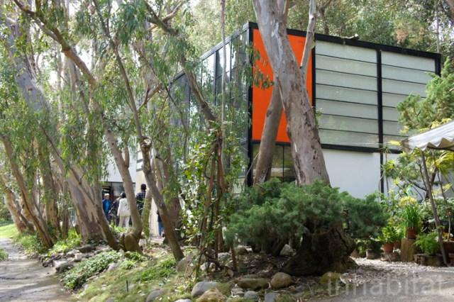 two- storey Modern home steel glass natural garden (12)