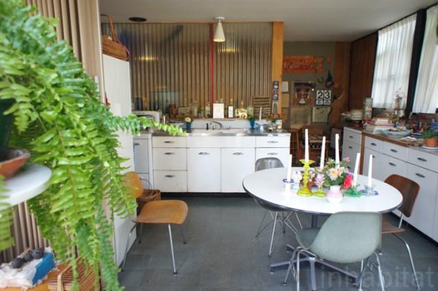two- storey Modern home steel glass natural garden (2)
