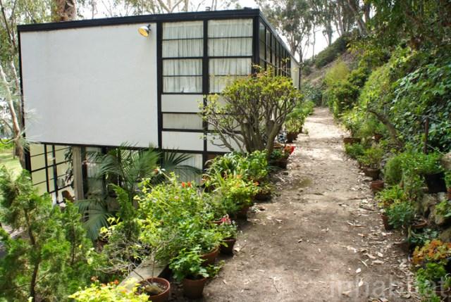 two- storey Modern home steel glass natural garden (4)