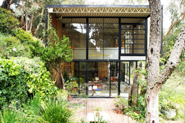 two- storey Modern home steel glass natural garden (5)