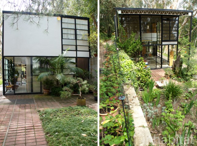 two- storey Modern home steel glass natural garden (9)