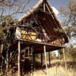 กระท่อมริมสวนแบบรัสติค ยกพื้นด้วยโครงสร้างไม้ ครบครันด้วยฟังก์ชันและงานไม้ตกแต่งภายใน