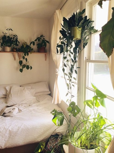 10-beautiful-loft-bedrooms-with-natural-accents (8)