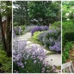 18 ไอเดียทางเดินเท้าตกแต่งสวน ร่มรื่น เขียวชอุ่ม ความสวยงามที่มาพร้อมฟังก์ชันการใช้งาน