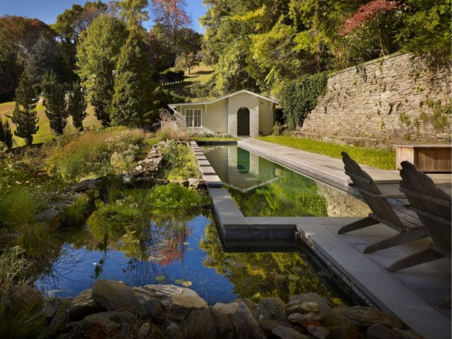 18-landscaping-around-the-swimming-pool (13)