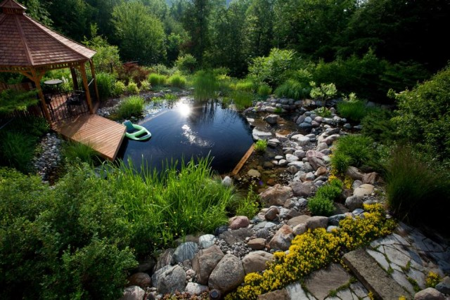 18-landscaping-around-the-swimming-pool (3)