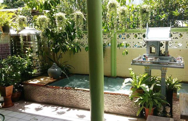 1k fish pond diy review (6)