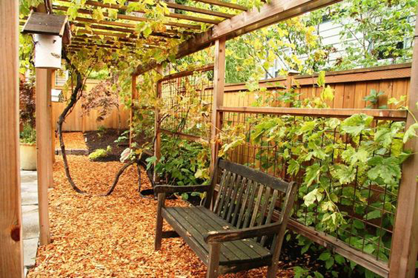 20-beautiful-and-natural-grape-arbor-ideas (1)