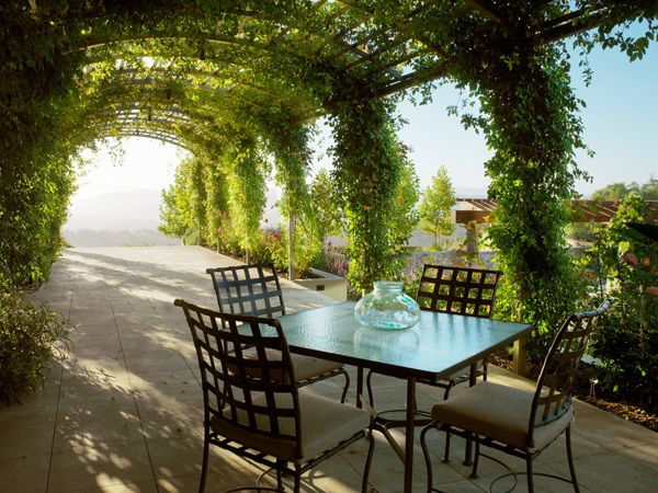 20-beautiful-and-natural-grape-arbor-ideas (20)