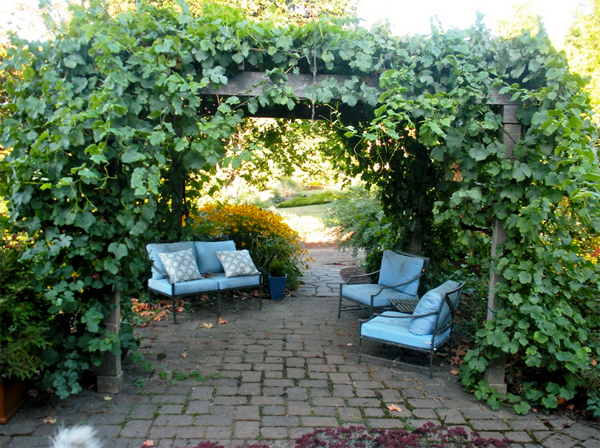 20-beautiful-and-natural-grape-arbor-ideas (9)