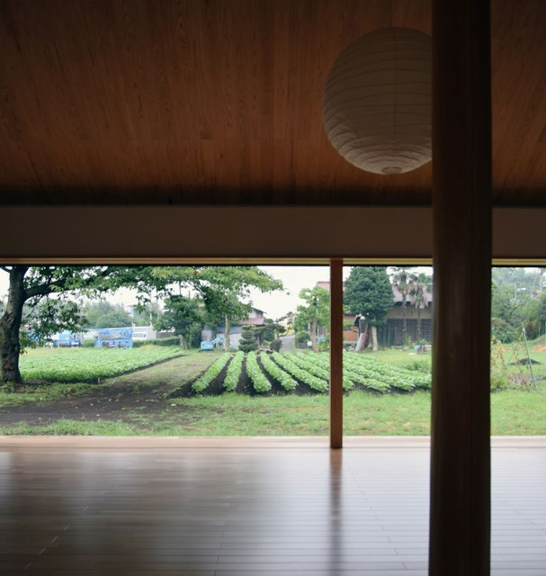 Contemporary Home garden And ambience (5)