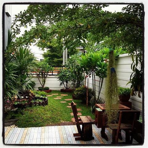 diy-beautiful-garden (1)