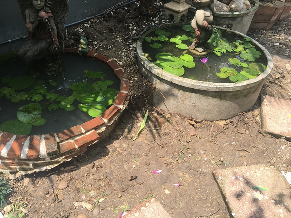 diy-beautiful-garden (16)