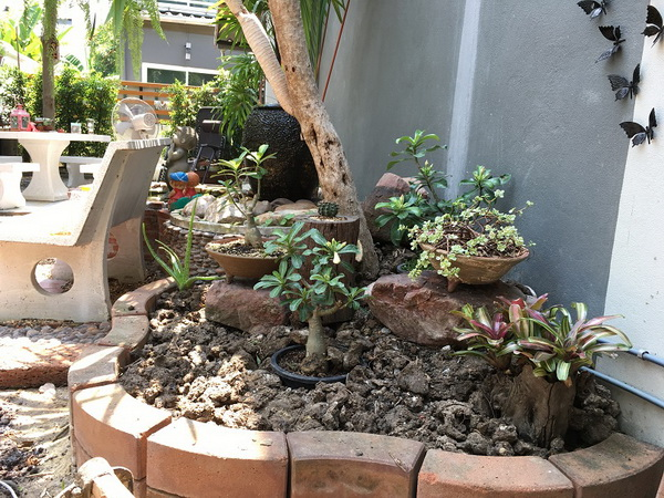 diy-beautiful-garden (34)