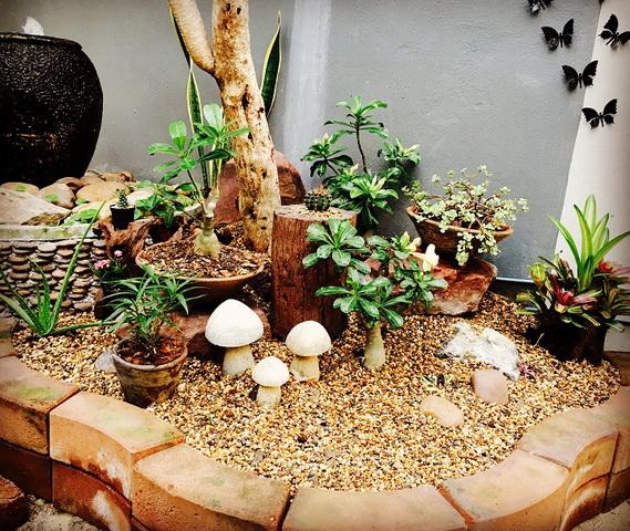 diy-beautiful-garden (36)