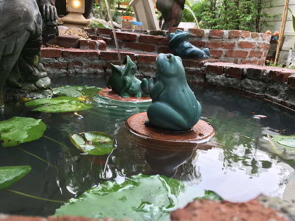 diy-beautiful-garden (46)