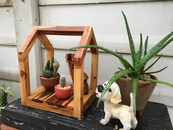 diy-beautiful-garden (57)