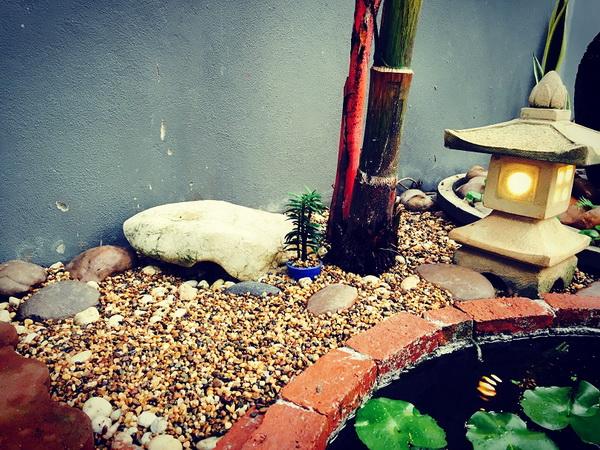 diy-beautiful-garden (68)
