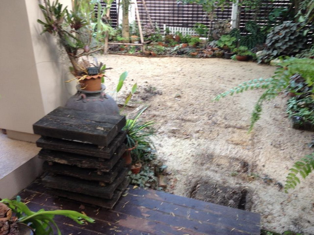 frontyard garden renovation (2)