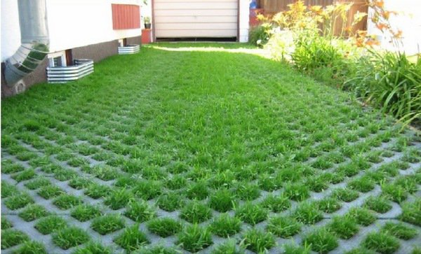 grass paver for courtyard (18)