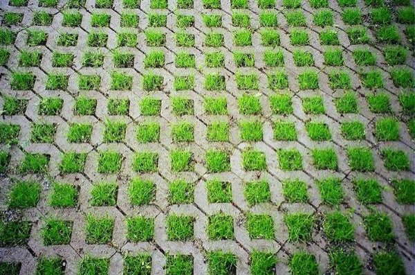 grass paver for courtyard (20)